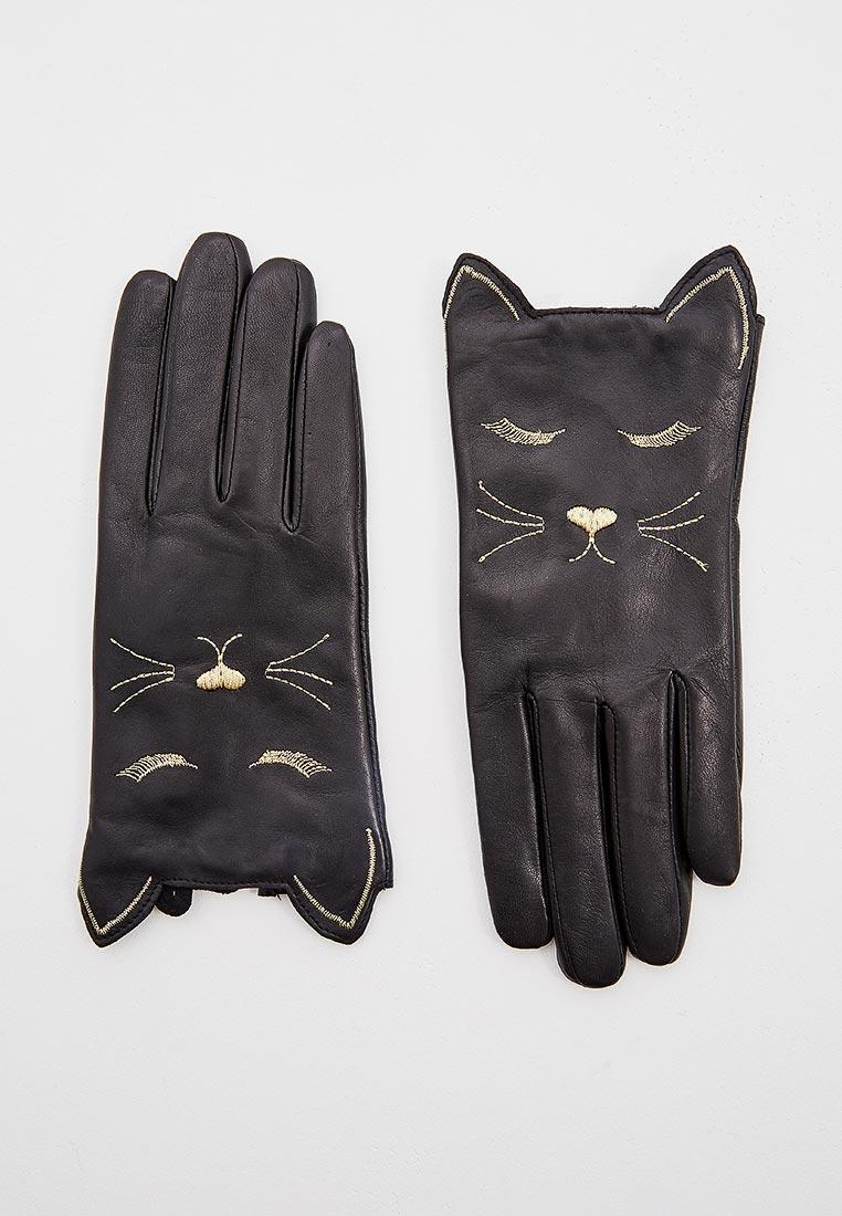 Женские перчатки Ted Baker London (Тед Бейкер Лондон) 149072