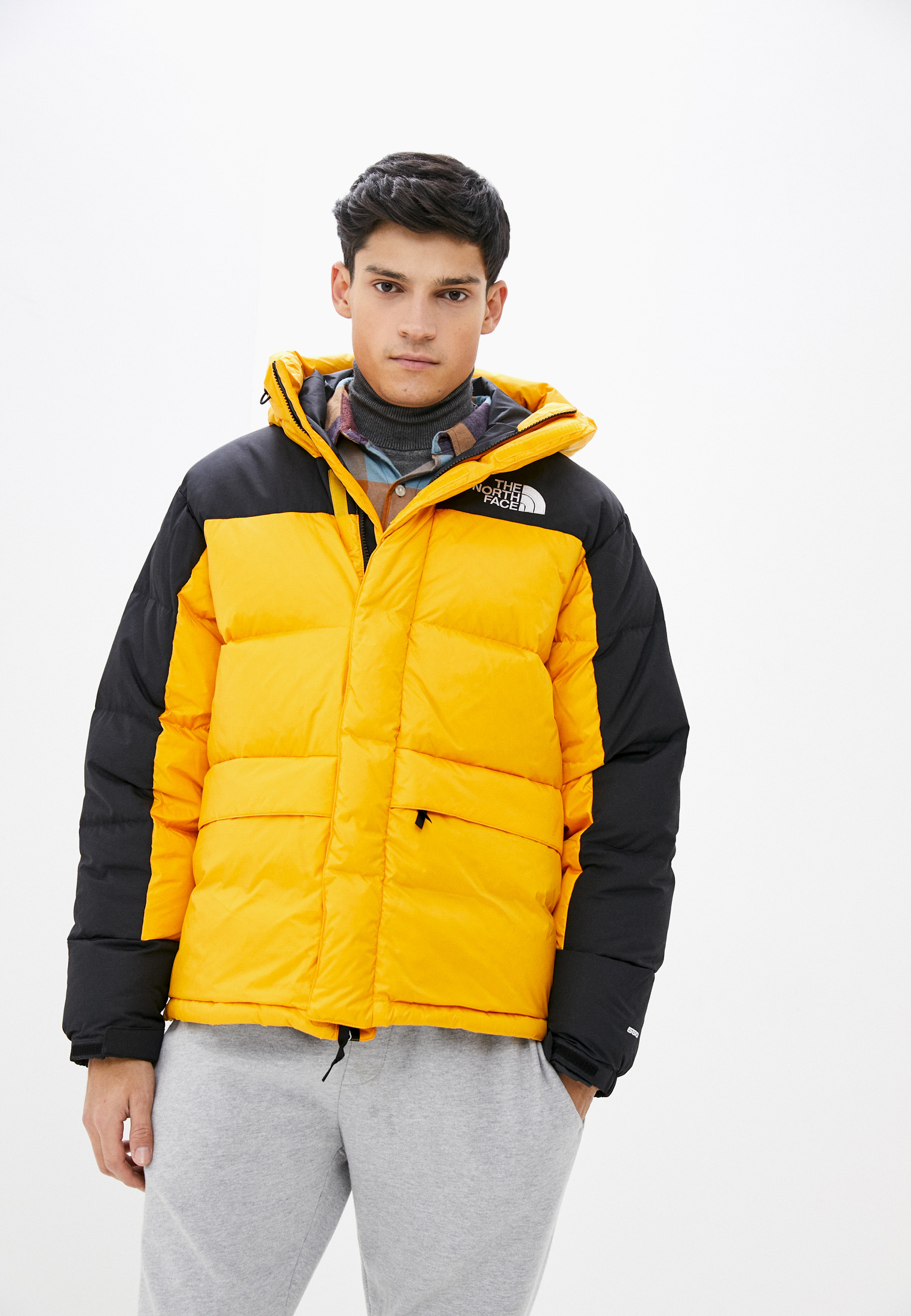 Мужская верхняя одежда The North Face (Зе Норт Фейс) TA4QYX56P