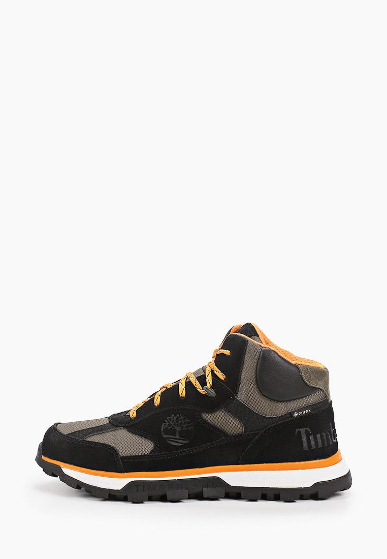 Ботинки для мальчиков Timberland (Тимберленд) TBLA27Y6M: изображение 1