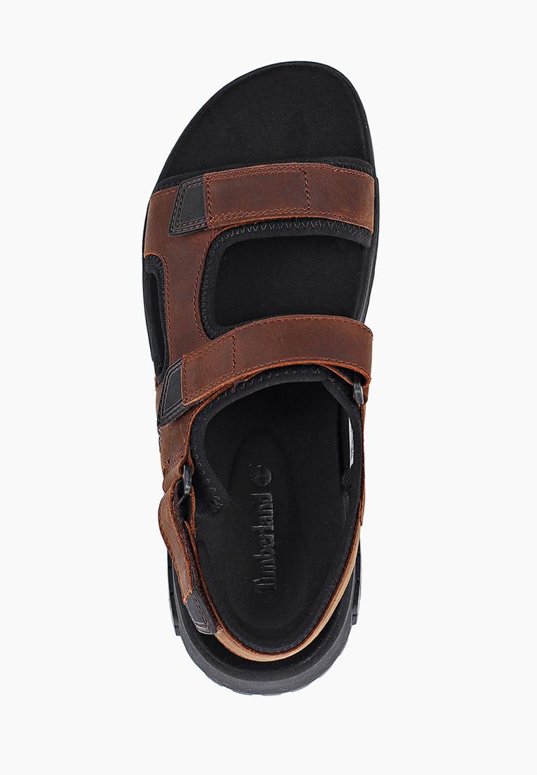 Мужские сандалии Timberland (Тимберленд) TBLA2B81M: изображение 4