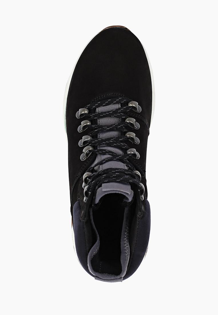 Женские кроссовки Timberland (Тимберленд) TBLA23FVW: изображение 4
