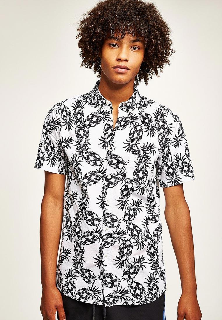 Рубашка с коротким рукавом Topman (Топмэн) 83D46PWHT