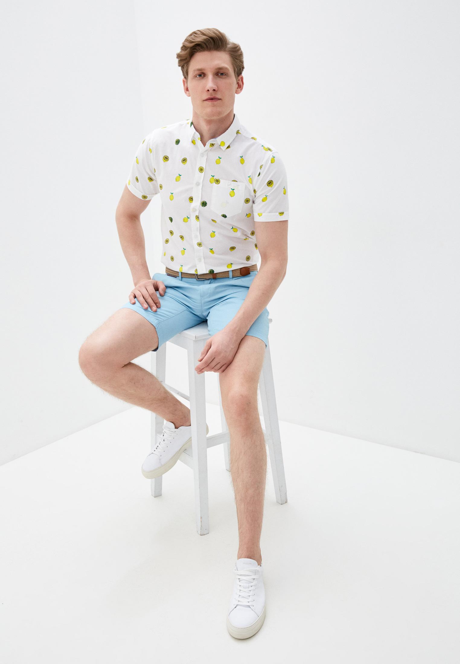Мужские повседневные шорты Tommy Hilfiger (Томми Хилфигер) MW0MW13536: изображение 6