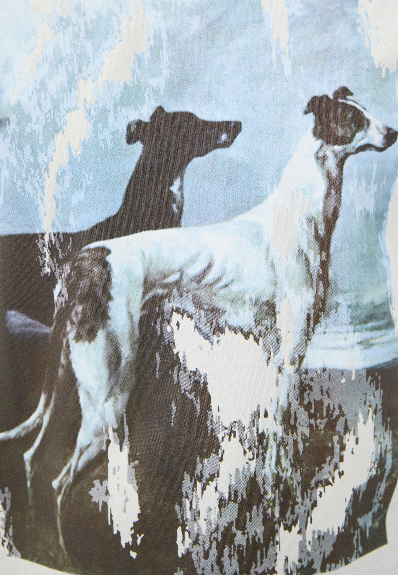 Мужская футболка Trussardi (Труссарди) 52T00455-1T005053: изображение 5