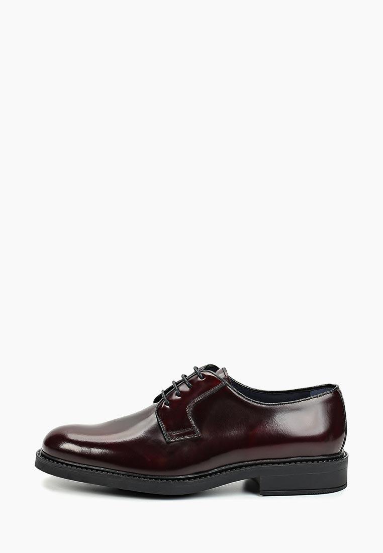 Мужские туфли Umber 5259