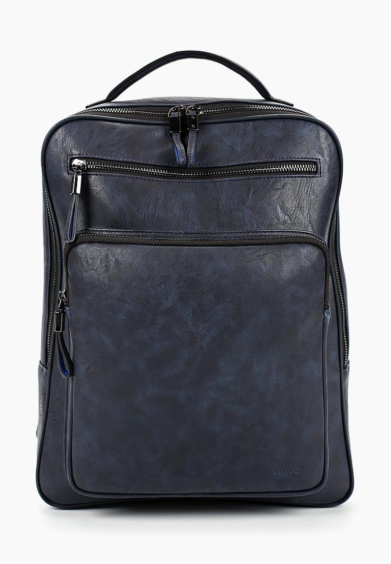 Городской рюкзак Vitacci (Витачи) BJ0031