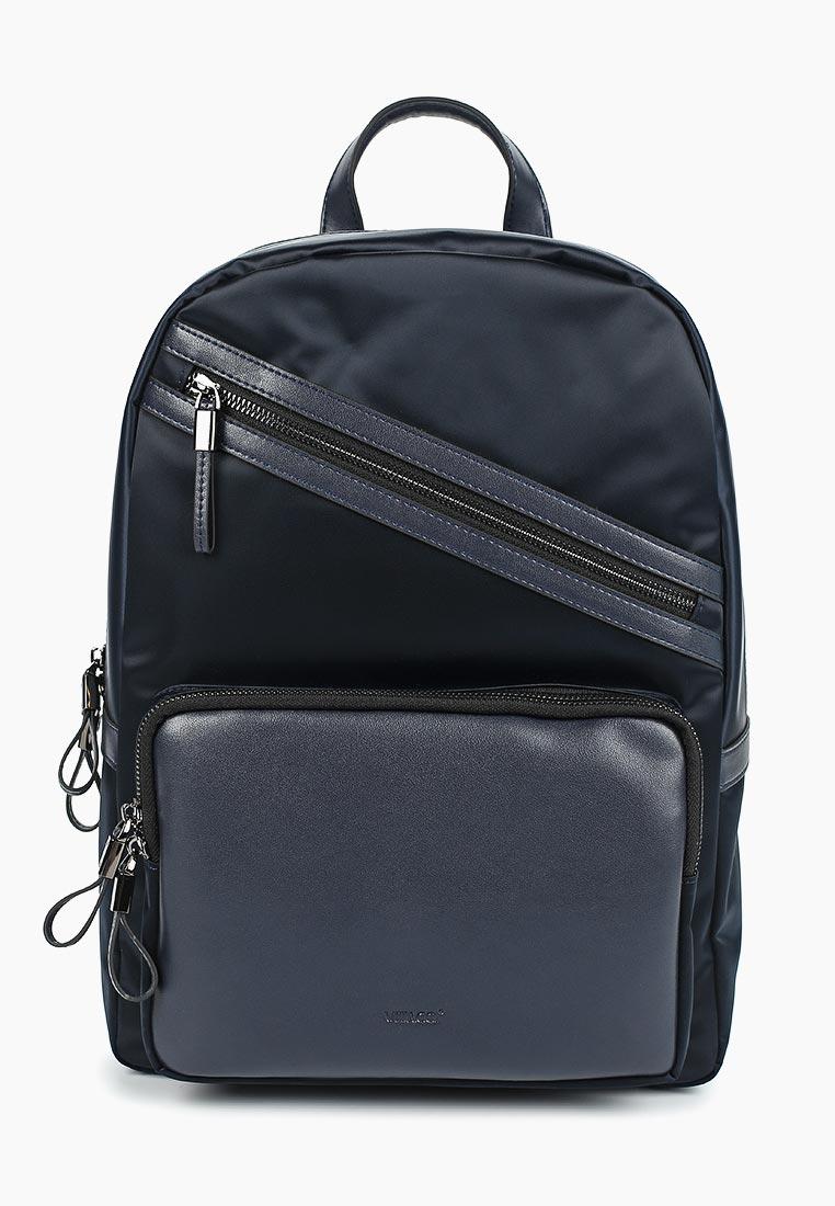 Городской рюкзак Vitacci (Витачи) BJ0133