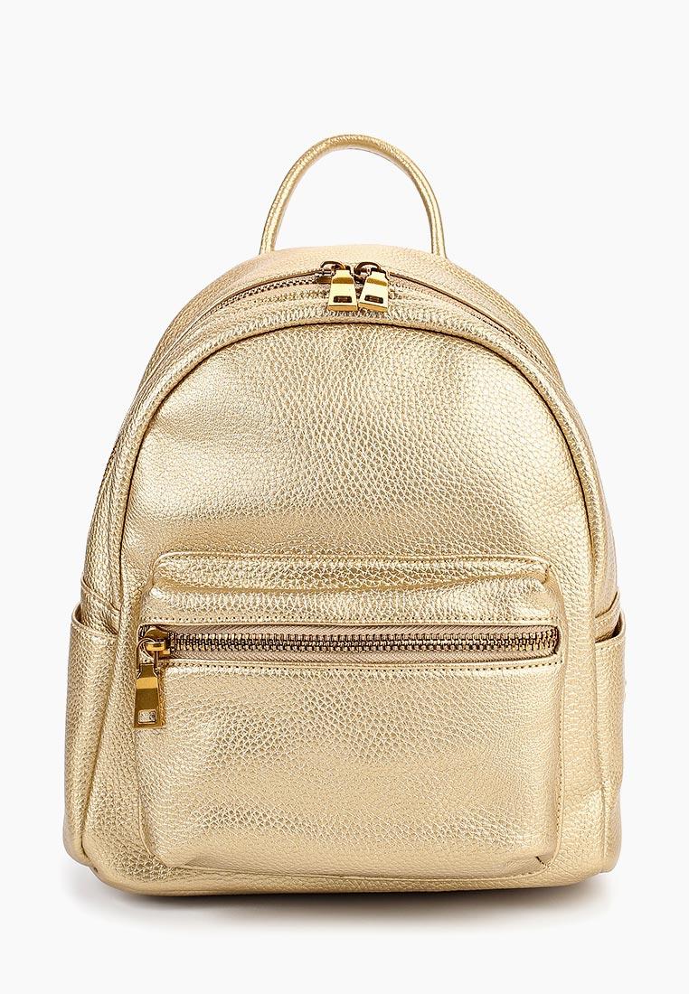 Городской рюкзак Vitacci (Витачи) BD576