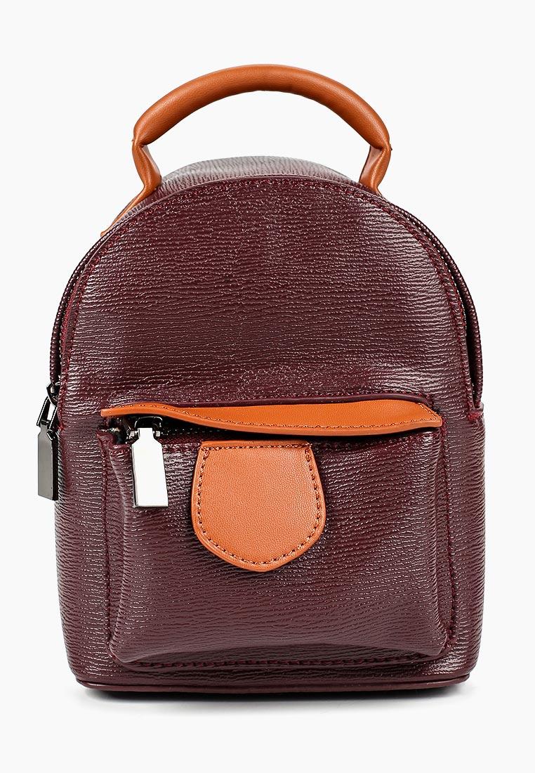 Городской рюкзак Vitacci (Витачи) HG0324