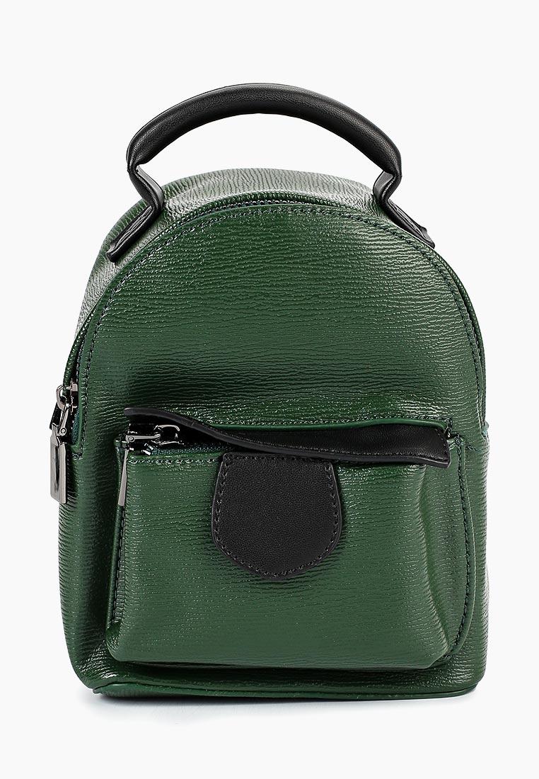 Городской рюкзак Vitacci (Витачи) HG0325