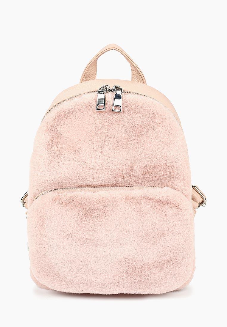 Городской рюкзак Vitacci (Витачи) HG0337
