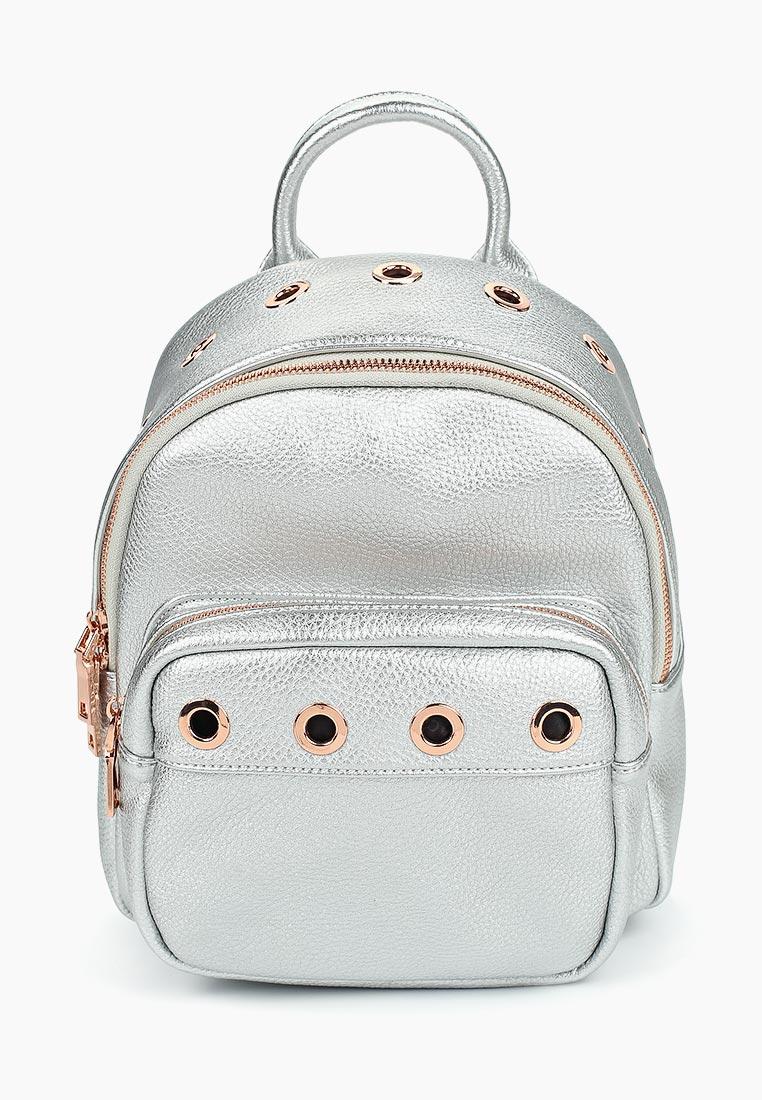 Городской рюкзак Vitacci (Витачи) BD0481