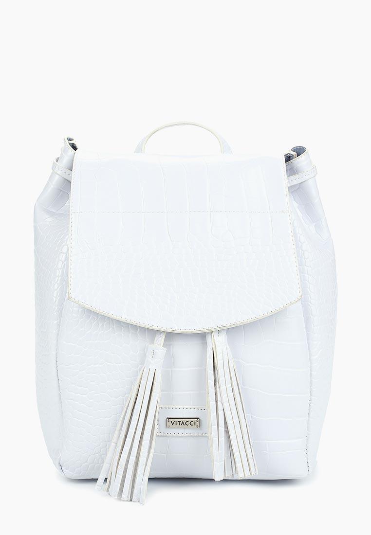 Городской рюкзак Vitacci (Витачи) BL0225*