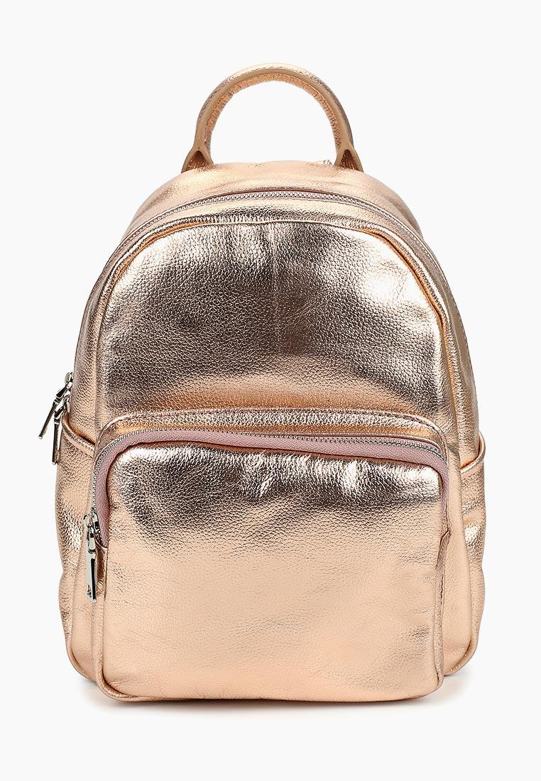 Городской рюкзак Vitacci (Витачи) PT0010