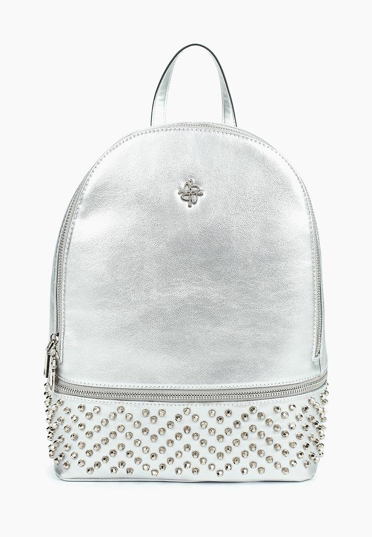 Городской рюкзак Vitacci (Витачи) V1260