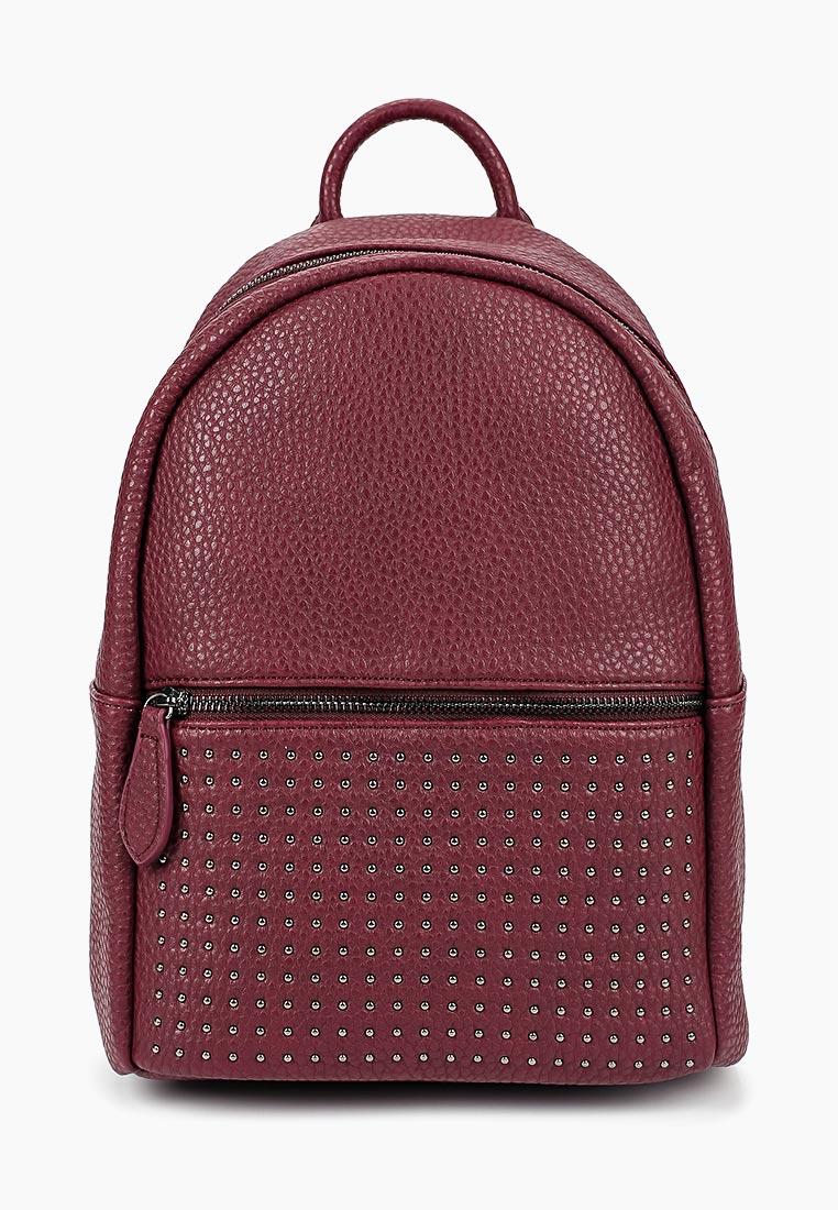Городской рюкзак Vitacci (Витачи) BL0047*