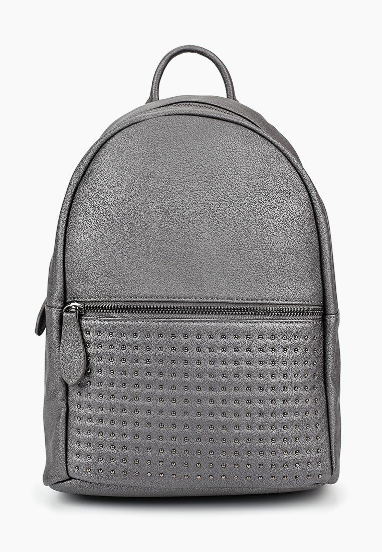 Городской рюкзак Vitacci (Витачи) BL0052*