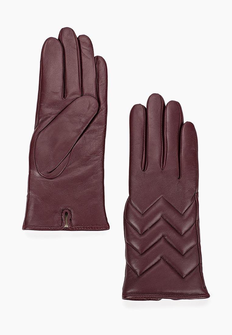 Женские перчатки Vitacci (Витачи) ZF103