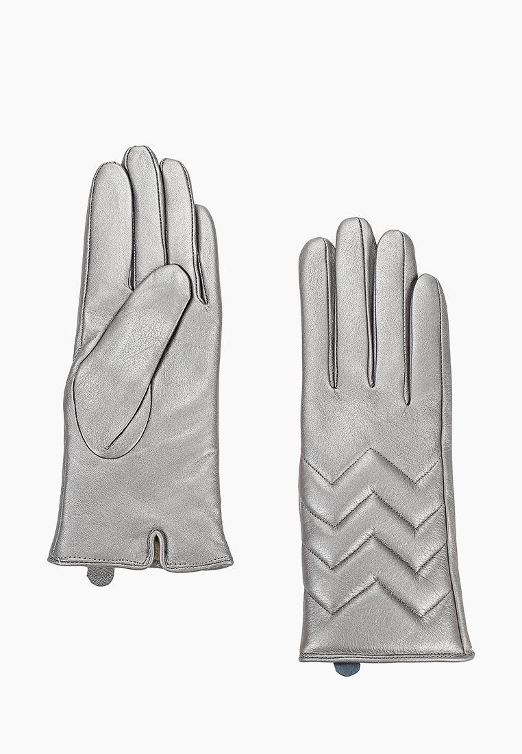 Женские перчатки Vitacci (Витачи) ZF105