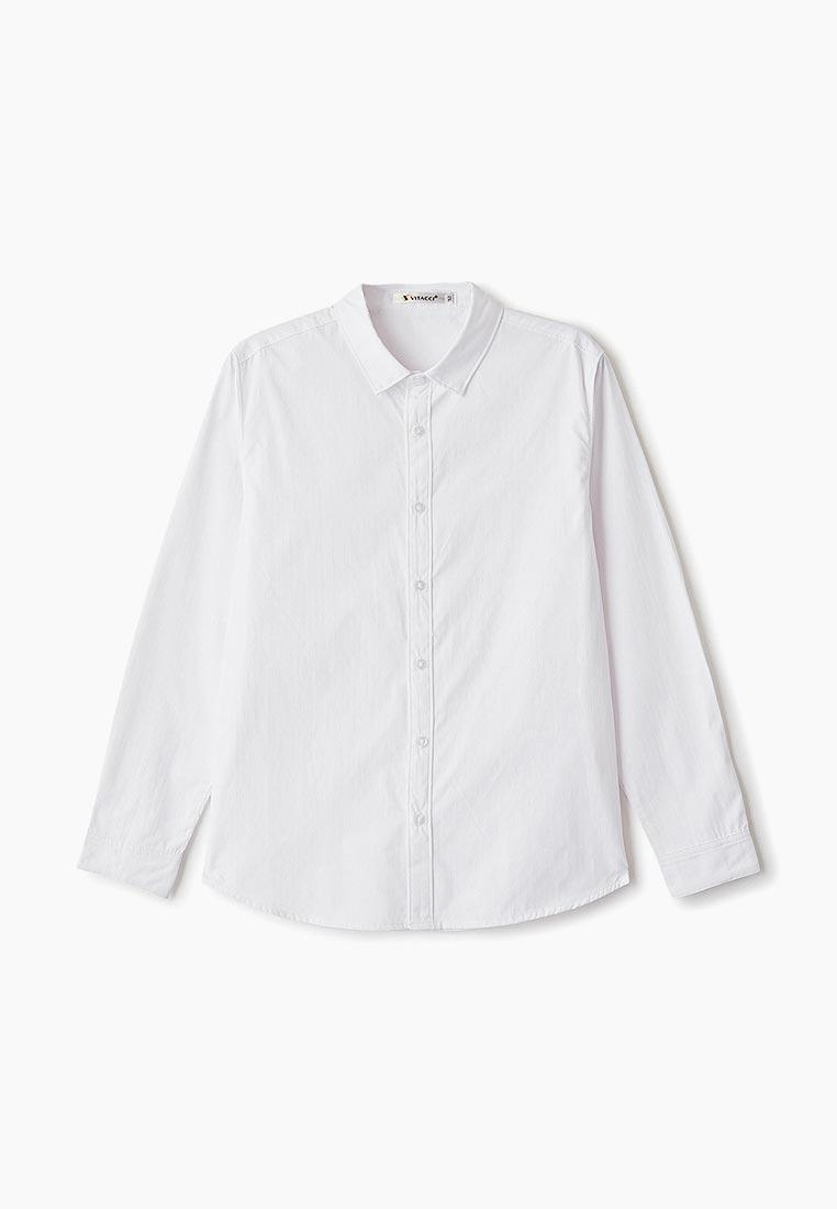 Рубашка Vitacci (Витачи) 1190308-01