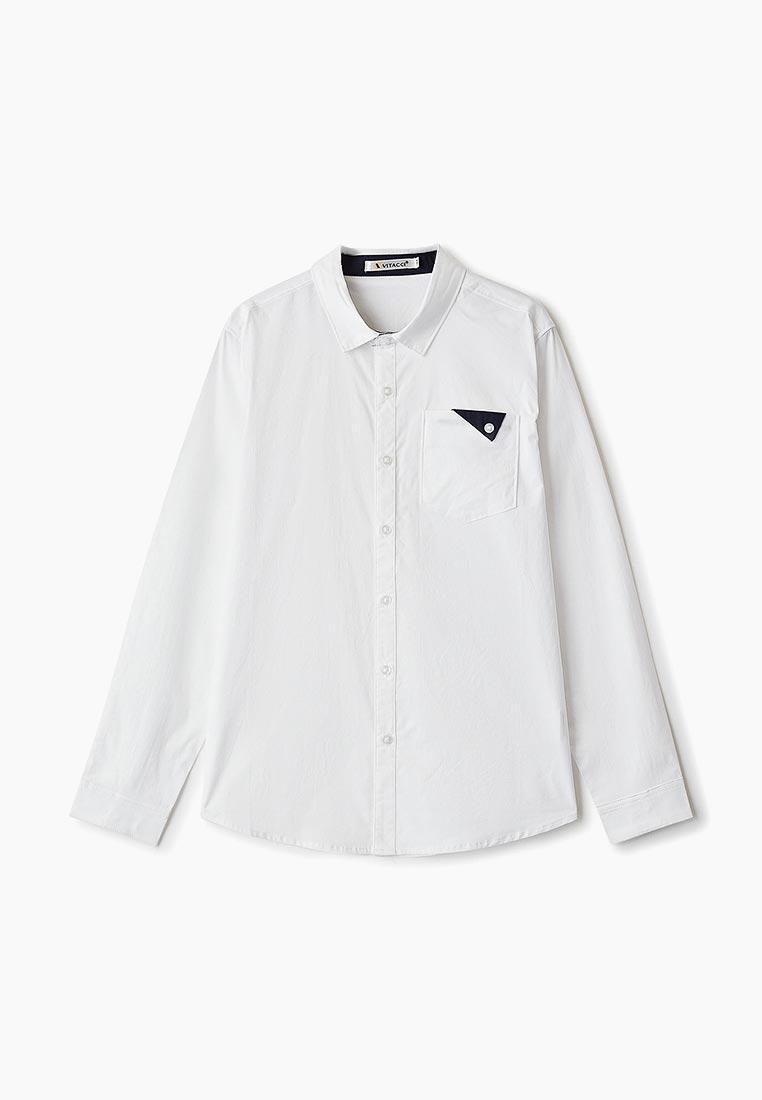 Рубашка Vitacci (Витачи) 1190294-01