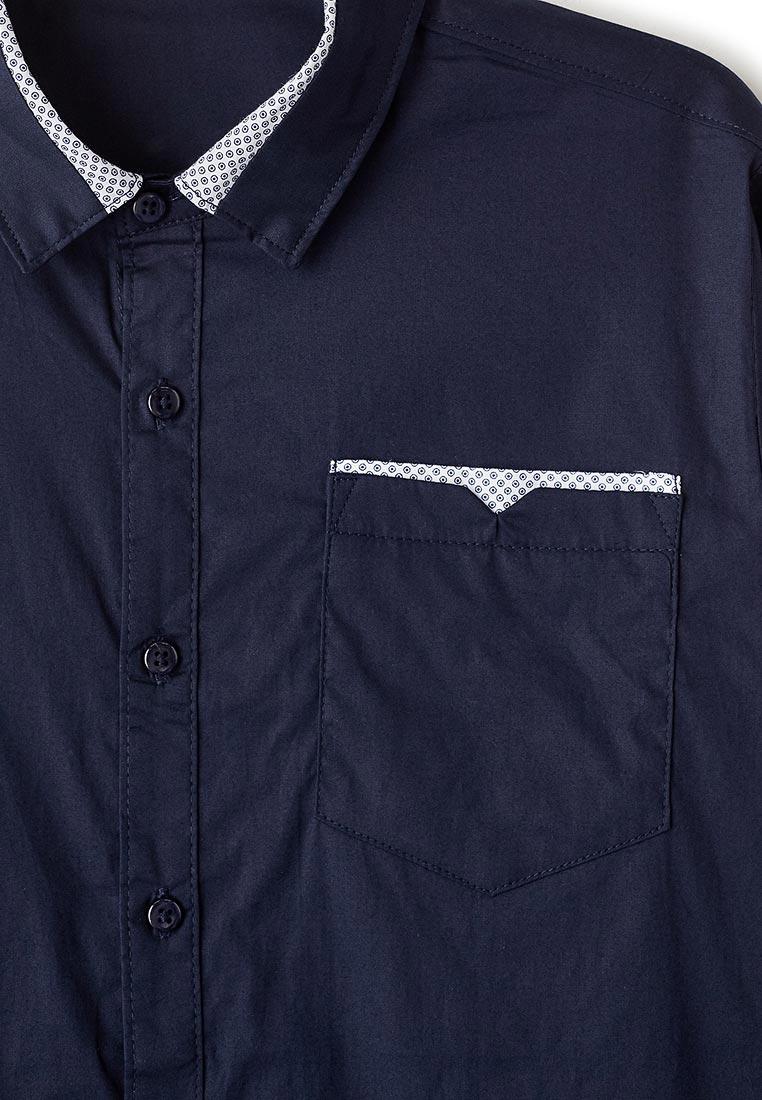 Рубашка Vitacci (Витачи) 1190300-04: изображение 3