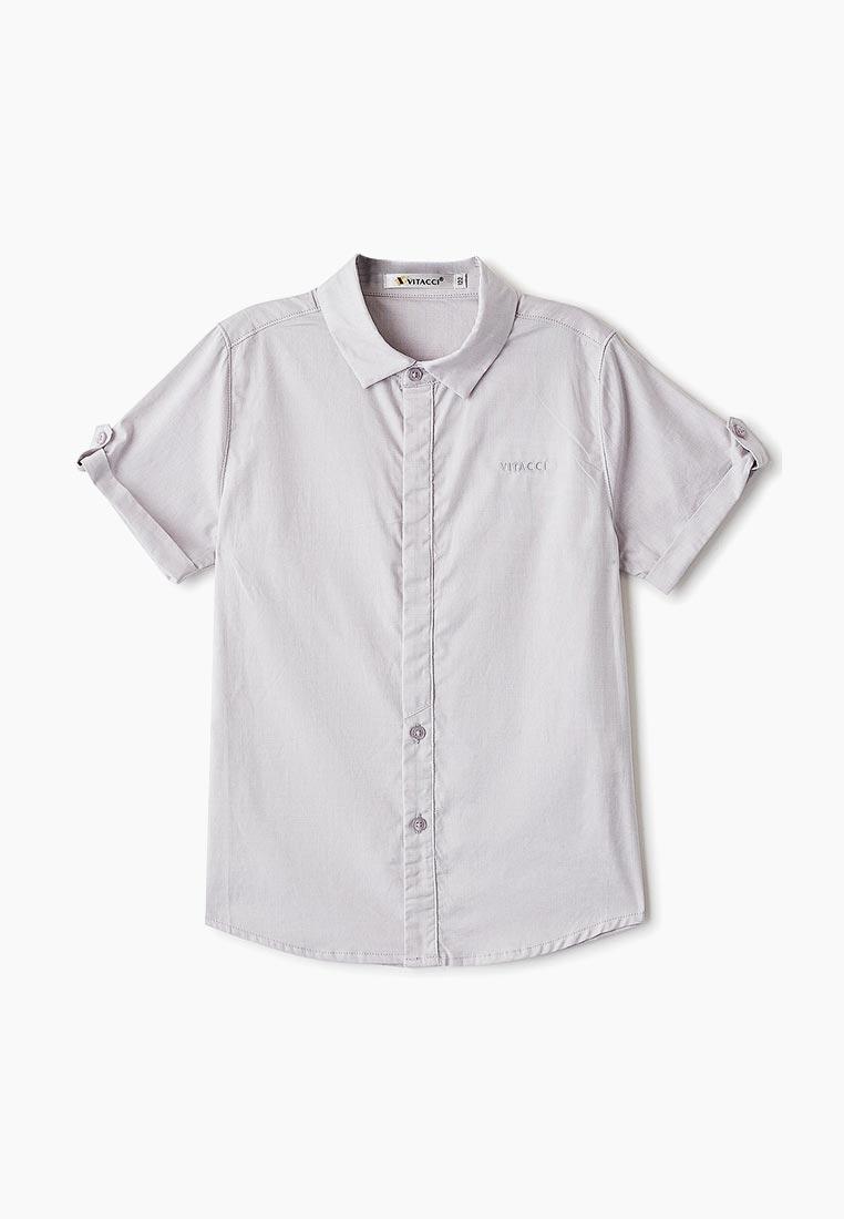 Рубашка Vitacci (Витачи) 1190311-02