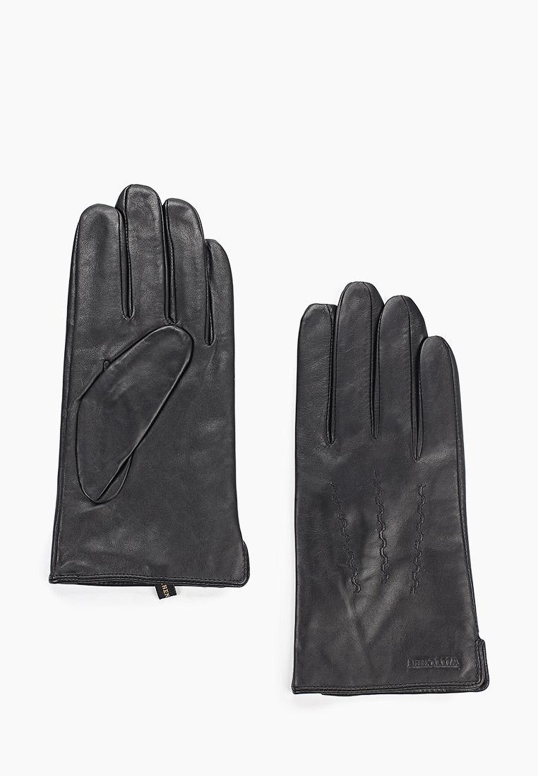 Мужские перчатки WITTCHEN (Витхен) 39-6L-328-1