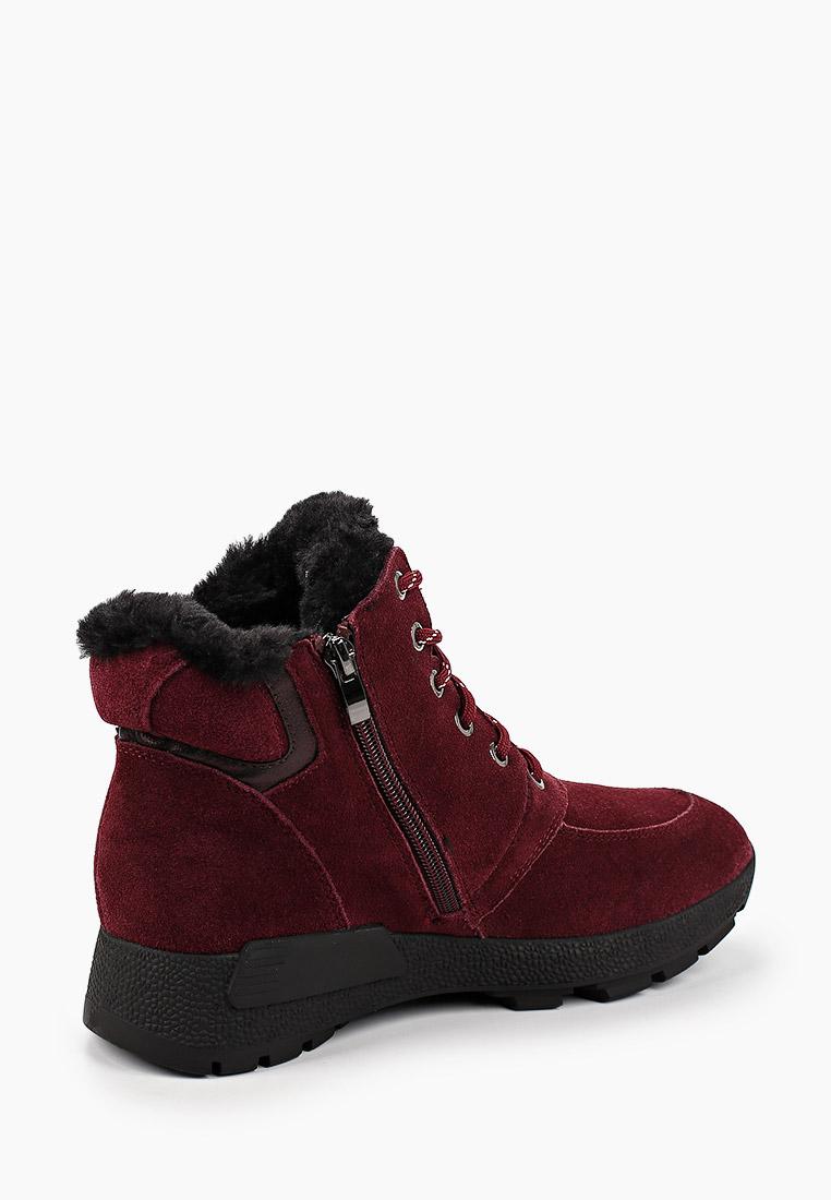 Женские ботинки Юничел 5D2703: изображение 4