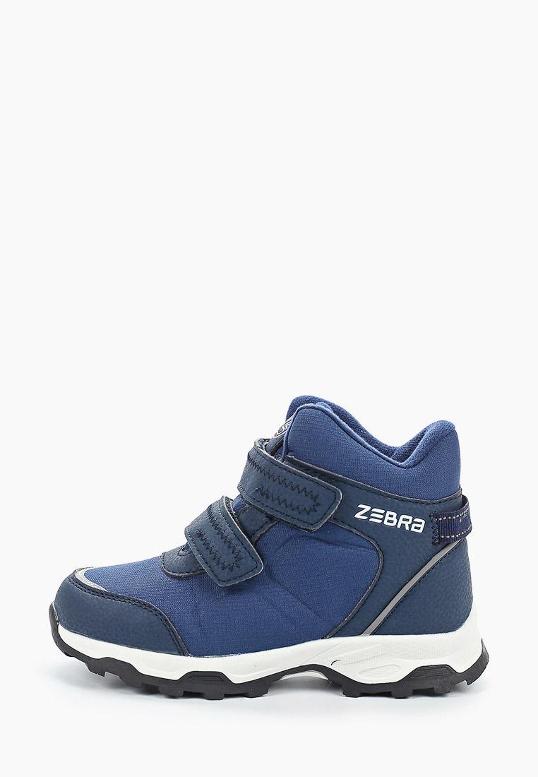 Ботинки для мальчиков Зебра 13521-5
