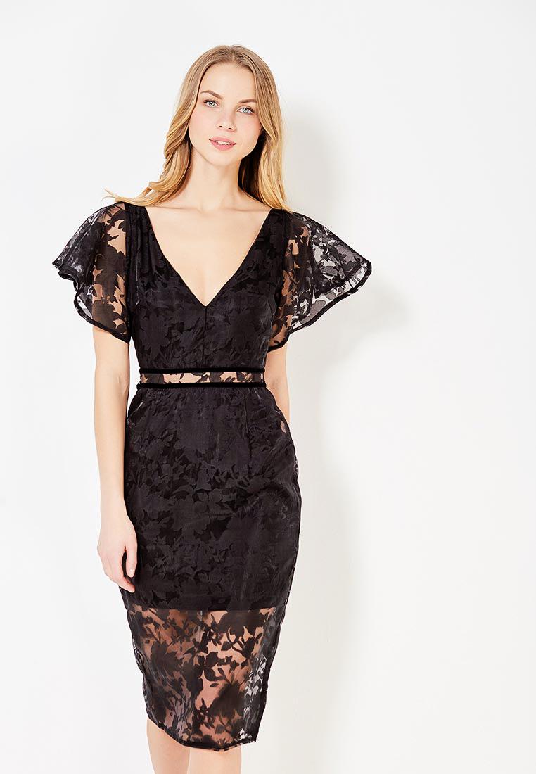 6b3bb1e1376 Платье LOST INK STRUCTURED ORGANZA BODYCON DRESS купить за 1 730 руб  LO019EWYNW26 в интернет-магазине Lamoda.ru