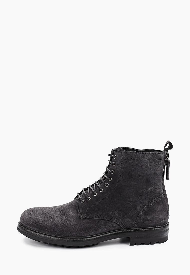 Ботинки Vitacci купить за в интернет-магазине Lamoda.ru